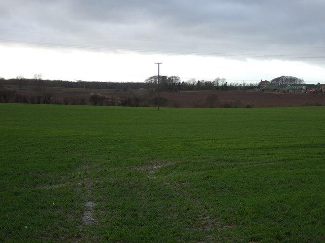 Farmland, Sunningdale