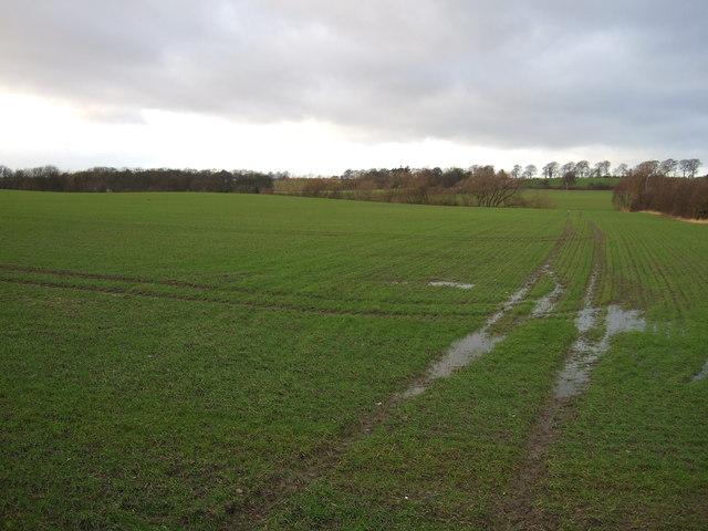 Farmland off Wakefield Road