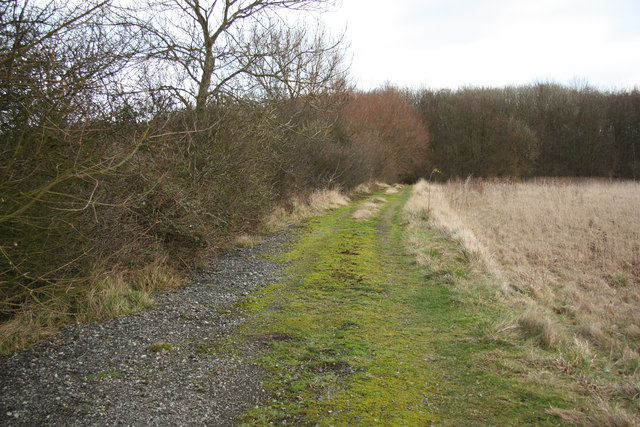 Track near Cocklode Wood