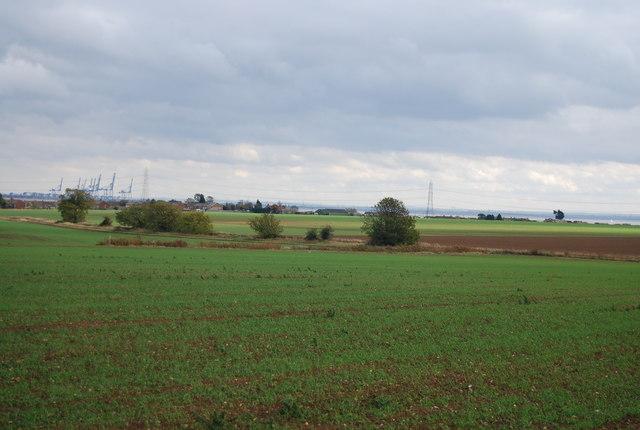 Farmland, Cuckold's Green