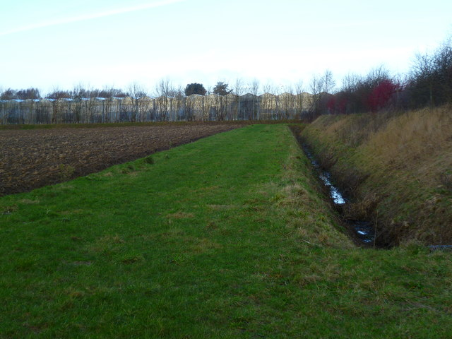 Drainage ditch, field and greenhouses east of Bosham