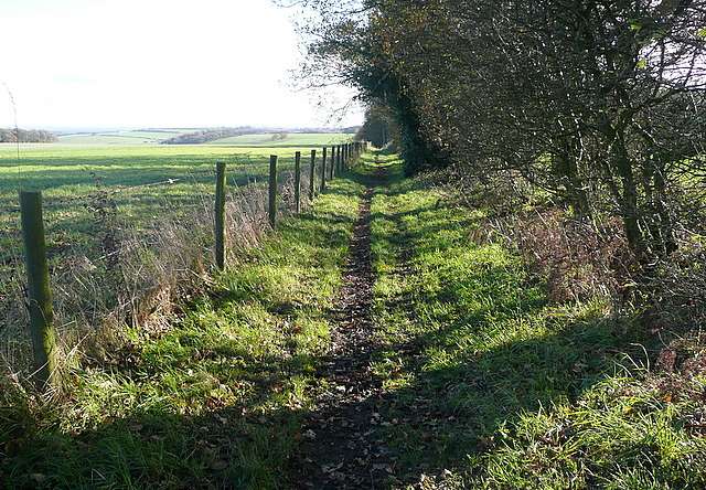 Bridleway towards Gaston Wood