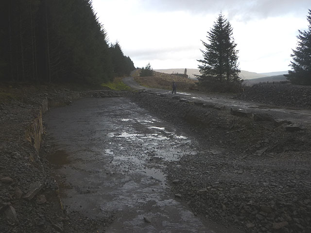 Quarried area by the forestry track