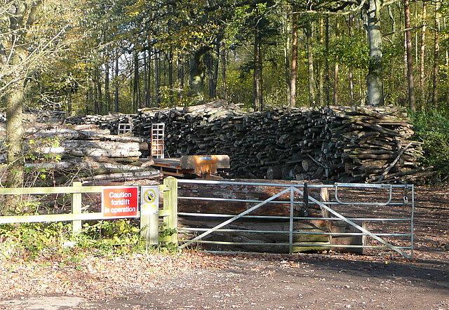 Timber depot on Summer Down Lane