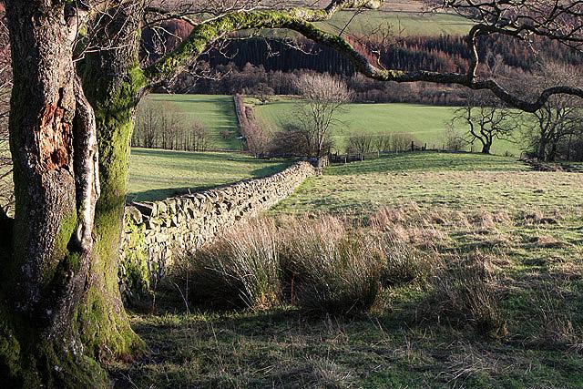 Farmland at Castle Hill