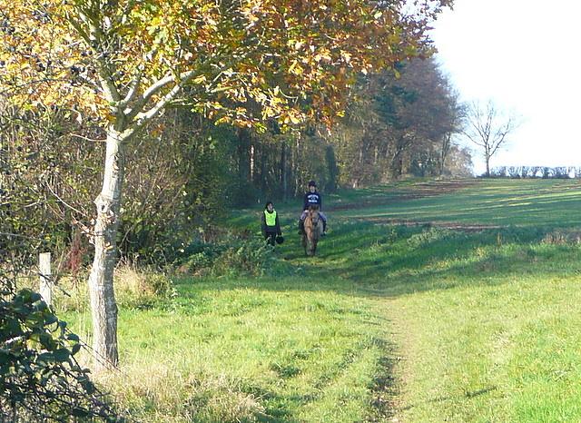 Bridleway towards North Oakley
