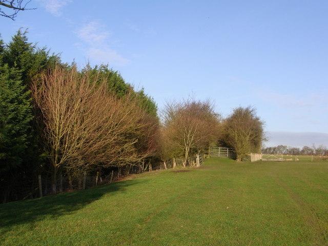 Field south of  former railway bridge