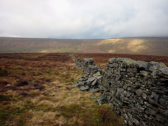 Moorland wall, Cam Rakes (or Low Green Field Lings)