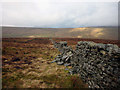 SD8381 : Moorland wall, Cam Rakes (or Low Green Field Lings) by Karl and Ali