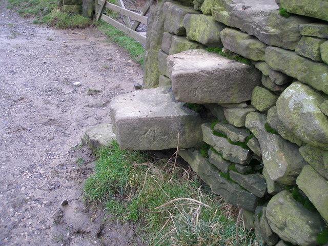 OS rivet on the stile near Antley Gate