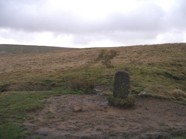 Boundary stone on Will Moor