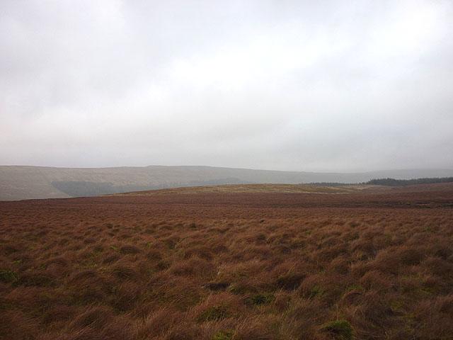 Moorland on Cam Fell