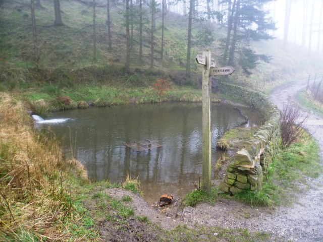 Small Dam in The Macclesfield Forest