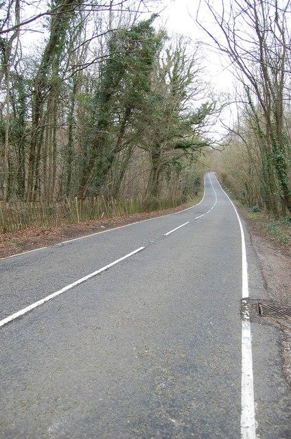 Lamberhurst road ( B2162) passing through woodland
