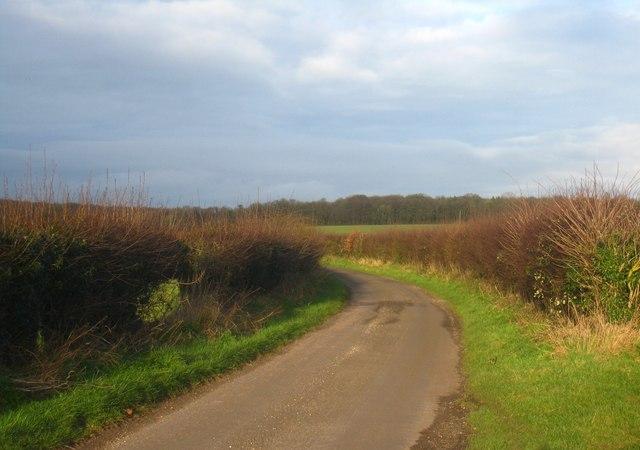 Lane north of West Stratton
