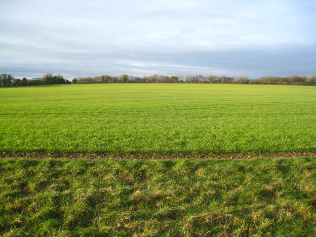 Farmland north of West Stratton
