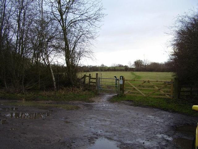 Three years on, Draycote Nature Reserve