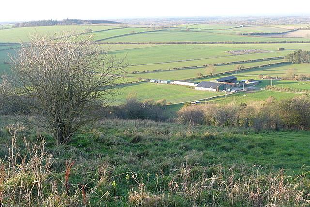 Towards Field Barn Farm