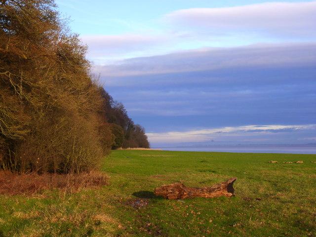Severn flood plain and Sedbury Cliffs