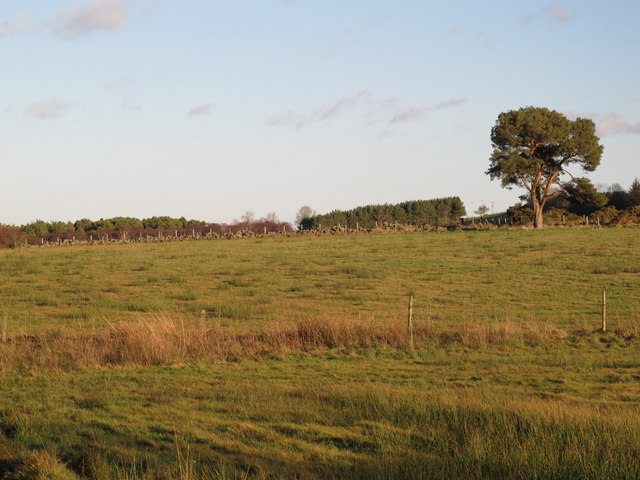 Farmland south of East Riggend Plantation
