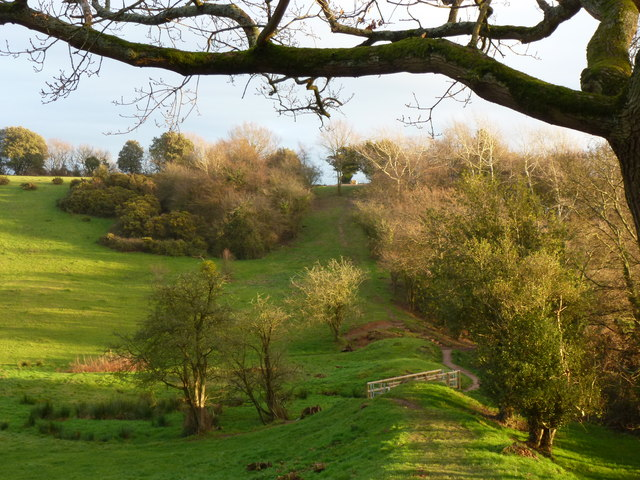 Offa's Dyke path, Sedbury, approaching new footbridge