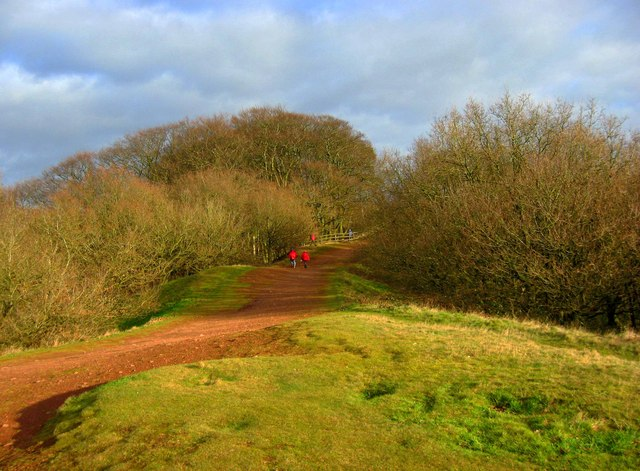 Path on the Clent Hills, near Clent