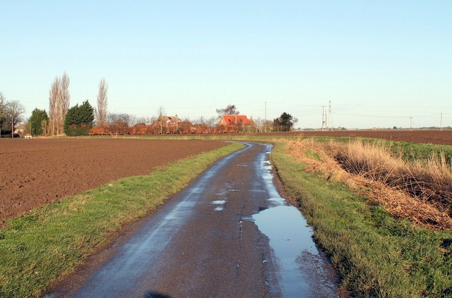 Back Lane near Gauntlet Farm