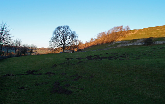 Mole Hills near Downholme