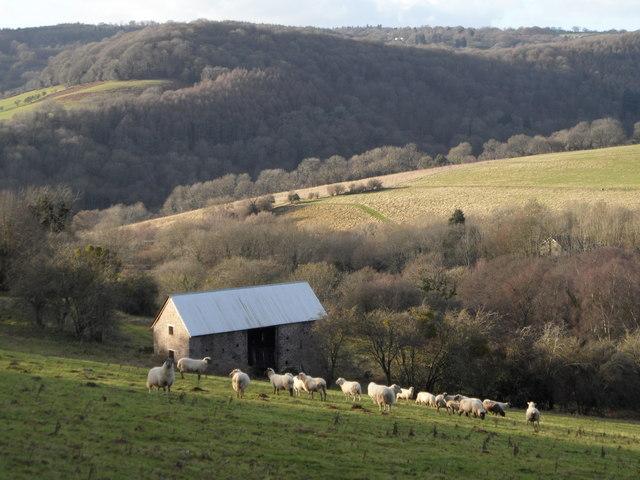 Barn on slopes of Madgett's Hill, Brockweir
