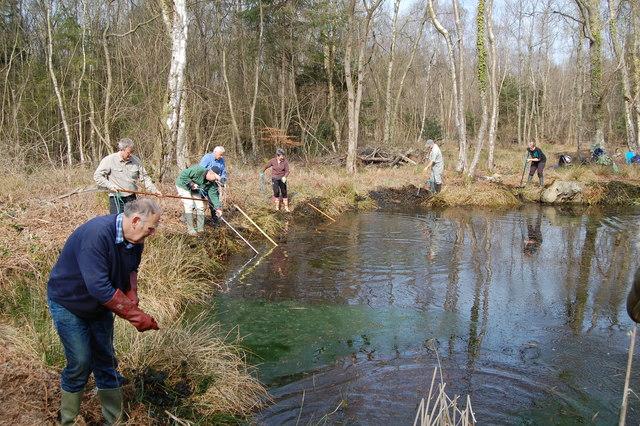 Pond restoration in Park copse