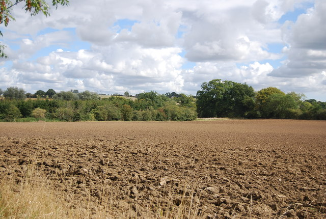 Ploughed field