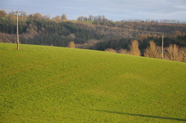Sun on a field at How Caple