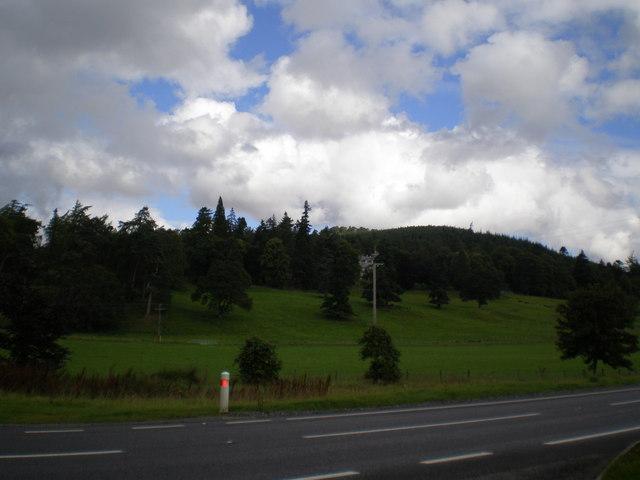 Balavil estate