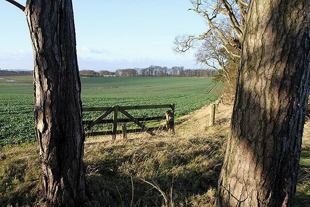 Farmland at Lurdenlaw