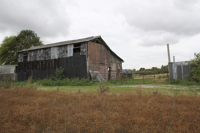 Old Barns and sheep in field