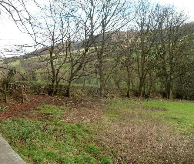 Cotswolds stone wall, Slad