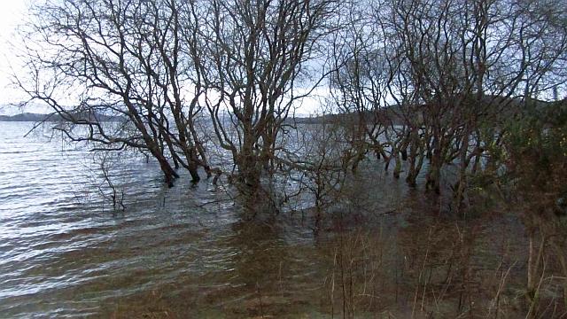 Loch Lomond is full