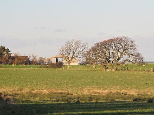 Farmland south of High Fotherley