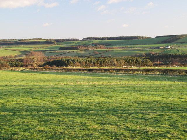 Farmland northwest of Colonel's Plantation