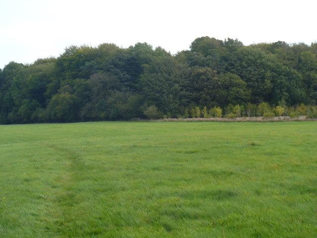 Bridleway to Enstone [6]