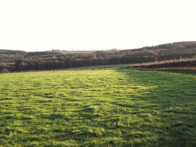 Farmland north of Willow Letch