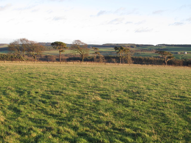 Farmland northwest of Fotherley Buildings (2)