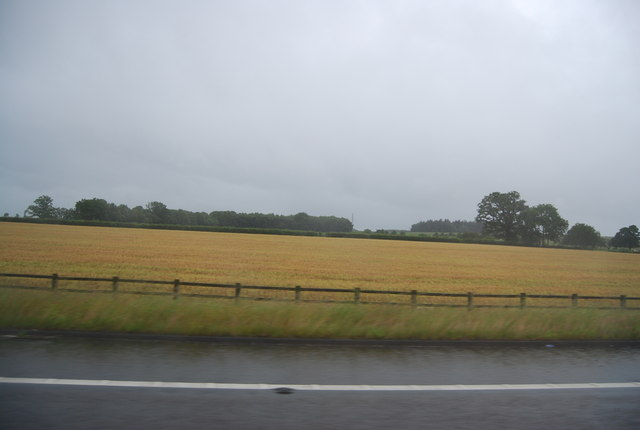 Farmland by the M6