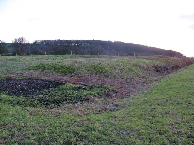 Moated site near Millington