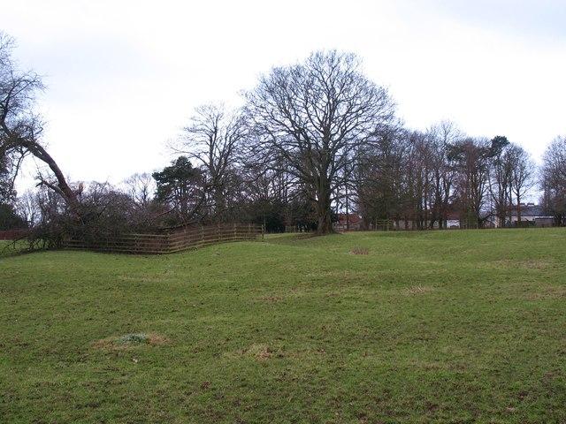 Nawton Park
