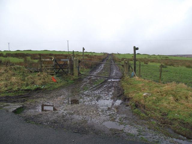 Footpaths off Matchmoor Lane