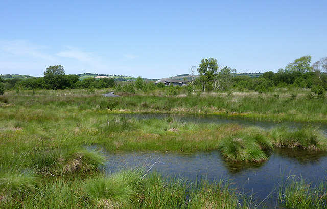 Pools on Cors Caron in July, Ceredigion