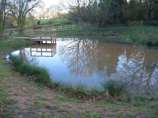 Pond, Allesley Park