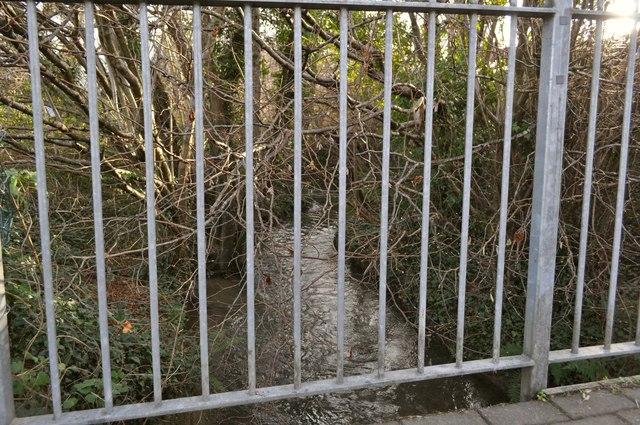 A view upstream on Coney Gut from a footbridge near St. John's garden centre