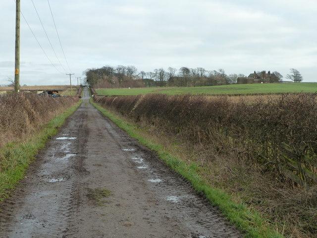 Farm Road near Crossings Wood